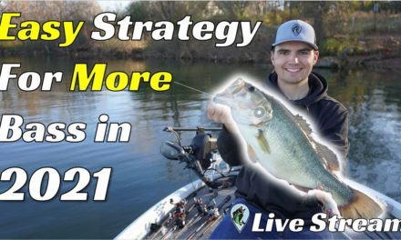 FTM Livestream #72 | Catch 3X More Bass In 2021 With This Strategy