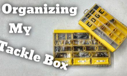 FlukeMaster – Organizing my Terminal Tackle Box – Bass Fishing
