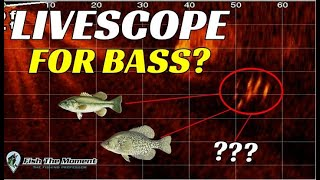 Should You Buy LiveScope for Bass Fishing? | Watch This Before You Buy!!