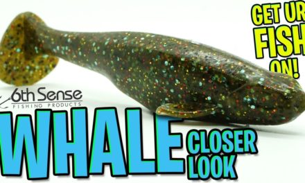 Closer Look at the 6th Sense Fishing Soft Plastic WHALE SWIMBAIT