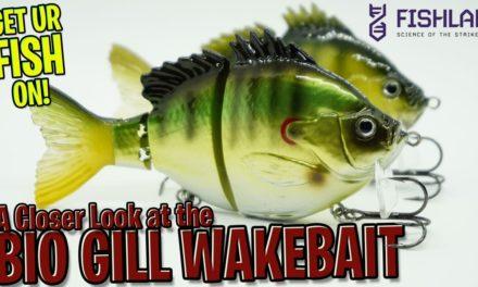 Closer Look at the Fish Labs Hard Bio Gill Bass Fishing Wake Bait