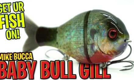 Closer Look at the Mike Bucca Baby Bull Gill Swimbait – Bass Fishing