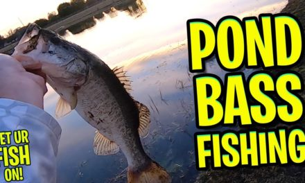 February 4th 2021 Evening Bank Pond Bass Fishing – ONLY CAUGHT ONE!