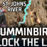 Bassmaster – Humminbird Unlock the Lake – St. Johns River (Bassmaster Elite Series)