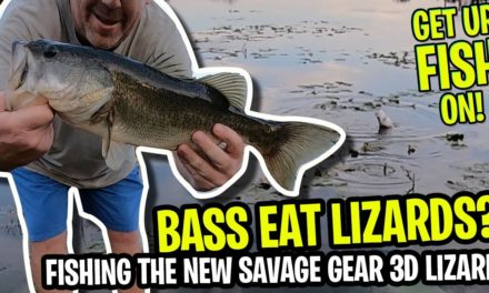 Pond Bank Bass Fishing the NEW Savage Gear 3d Lizard – GET UR FISH ON!