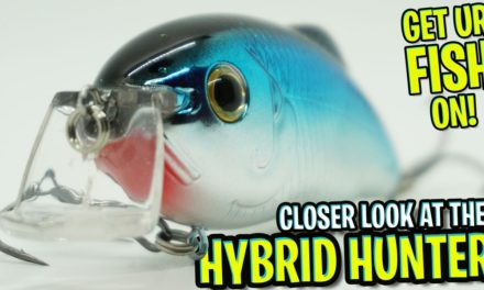 Closer Look at the Strike King Hybrid Hunter Bass Fishing Crankbait