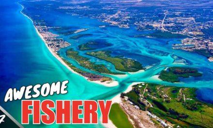 Scott Martin Pro Tips – Fishing the AMAZING West Coast of Florida – SMC TV 20-7