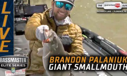 Bassmaster – Giant Pickwick Smallmouth for Brandon Palaniuk