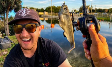 Lawson Lindsey – I Caught A Monster!    Fishing Giant Swimbaits In Public Water Pays Off Big!