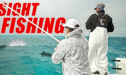 Scott Martin Pro Tips – Sight Fishing for These BEAUTIFUL FISH!