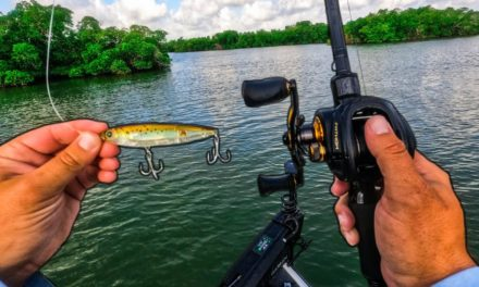 Lawson Lindsey – Catch Big Fish on Saltwater Islands in The Florida Everglades