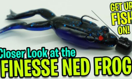 Closer Look at the Lunkerhunt Finesse Ned Frog Bass Fishing Lure