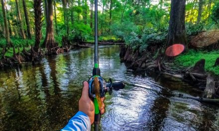 Lawson Lindsey – Fishing a Super Clear Brackish River for Surprising Fish With Topwater Frogs