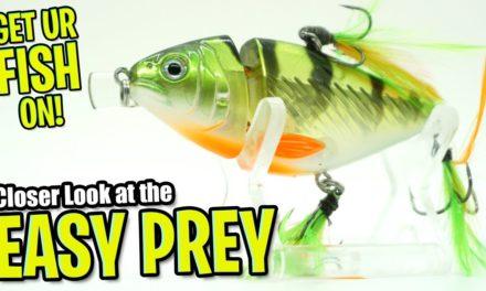 Lunkerhunt Easy Prey Shallow Water Bass Fishing Crankbait