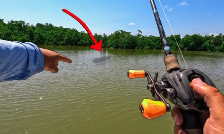 Lawson Lindsey – Sight Casting a BIG Fish to End an Epic Day of Back Country Saltwater Fishing