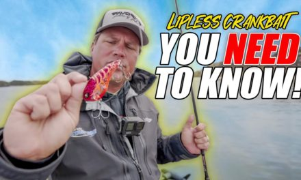 Scott Martin Pro Tips – A Lipless Crankbait Tip YOU NEED TO KNOW!