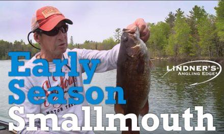 Early Season Smallmouth Bass