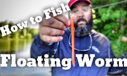 FlukeMaster – How to Fish the Floating Worm – Bass Fishing