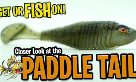 Closer Look at the Chasebaits Paddle Tail Large Mouth Bass Fishing Lure